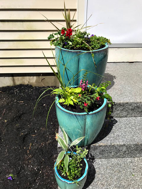 Saco, Maine - Container Plantings